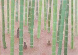 春の竹林 常陸美智子